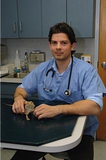 Sova Animal Hospital - Butler, NJ - Our veterinarian Dr. Matthias Mitra